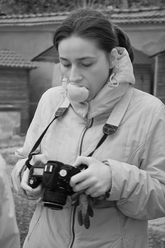 Monica musca marul (3M)