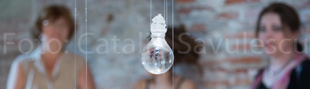 Ioana Stelea, Mesaje pe sticla
